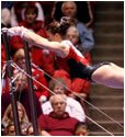 High Flying Red Rocks